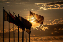 American Flag Baclkit By Sun A...