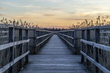 Long Wooden Pier Surrounded By...