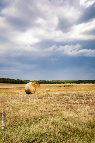Obraz belka siana na polu chmury i rżysko - fototapety do salonu