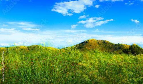 Photo paisaje de un prado con la hierba agitada por el viento y las montañas detras