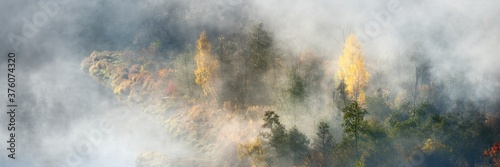 Foto Breathtaking panoramic aerial view of the colorful golden mixed coniferous forest and river in a clouds of fog at sunrise