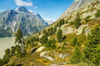 canvas print picture - Arvenbäume am Grimselsee im Berner Oberland