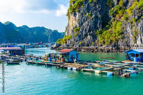Obraz na plátně Floating village in Halong Bay, Vietnam.