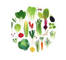 Vegetable Clip Art, Food Art I...