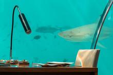 Underwater Restaurant In The M...