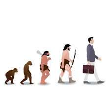 Human Evolution From Ape To Bu...