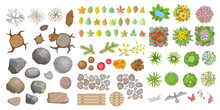 Vector Set. Objects Of A Forest Or Park. Top View. Stumps, Trees, Bushes, Grass, Stains, Stones, Leaves, Mushrooms, Berries Isolated On A White Background. View From Above.
