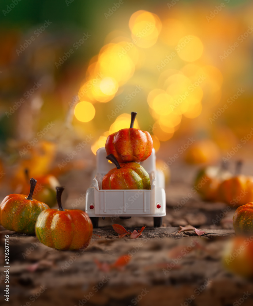 Fototapeta White retro truck with pumpkins in forest with festive bokeh background. Concept of Thanksgiving day, Halloween and autumn postcards.