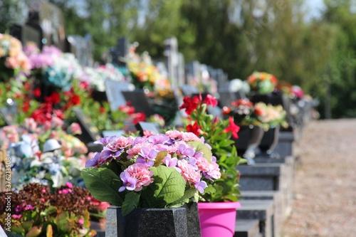 Fotografie, Obraz cimetière, tombeaux, croix, christ, ornement, fleurs, tristesse