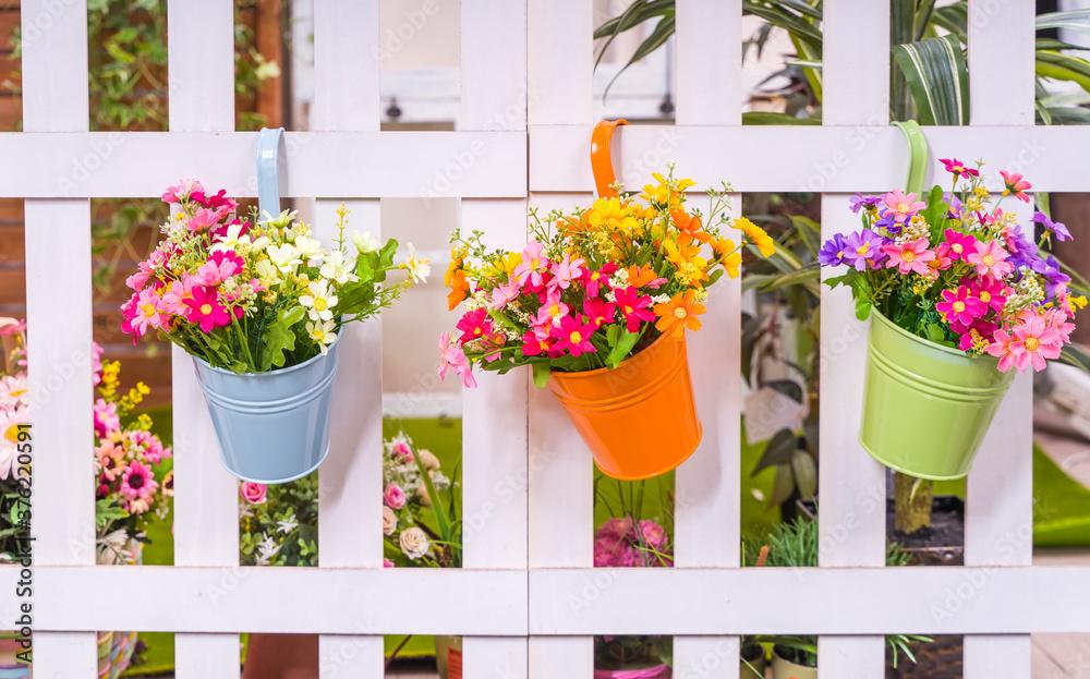 Fototapeta Hanging Flower Pots with fence