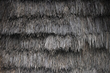 Thatched Roof Of The House