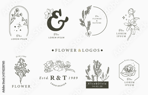 Photo Beauty occult logo collection with geometric,rose,moon,star,flower