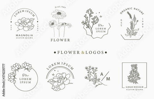 Fotografie, Obraz Beauty occult logo collection with geometric,rose,moon,star,flower