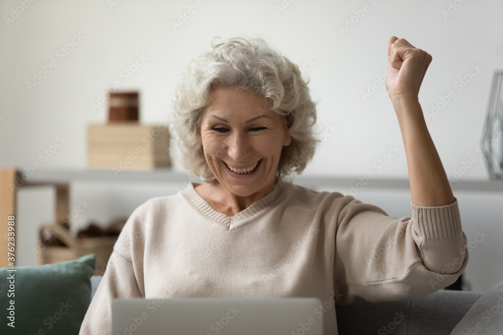 Fototapeta Overjoyed positive mature woman using laptop close up, looking at screen, reading good news in message in social network or email, great shopping offer, celebrating win, sitting on couch at home