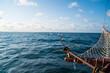 canvas print picture - Auf einem Boot im Atlantischenozean. Wale beobachten