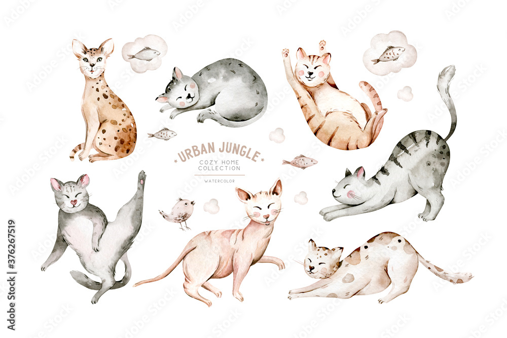 Fototapeta Cute watercolor cartoon cats set illustrations isolated on white. Perfect for stikers, wallpaper, poster decoration.