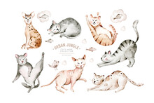 Cute Watercolor Cartoon Cats Set Illustrations Isolated On White. Perfect For Stikers, Wallpaper, Poster Decoration.