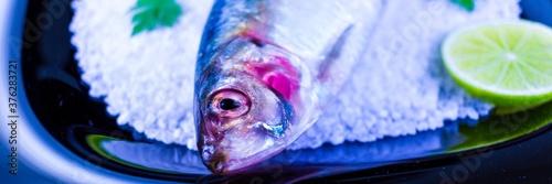 Vászonkép Banner Conceito de prato com sardinha sobre o sal grosso no prato preto