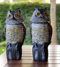 Two Owls Decoys To Scare Away Squirrels And Birds