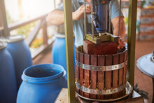 Worker Doing The Process Of Grapes Pressing To Make Wine