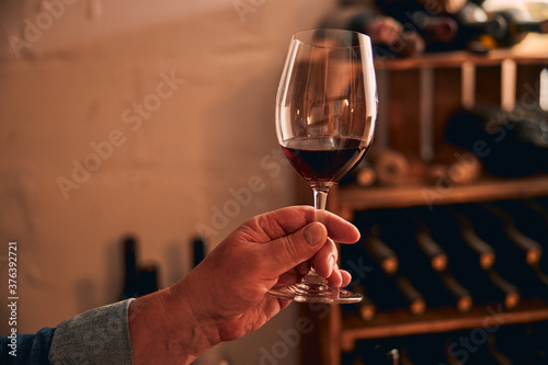 Fotografie, Obraz Male sommelier holding glass of red wine