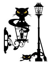 Evil Black Cat And Street Ligh...