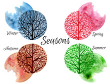 Hand Drawn Four Seasons Design