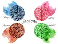 Hand Drawn Four Seasons Design