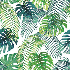 Fototapeta Do sypialni Botanical green seamless pattern leaves Fern and Monstera on white background. Exotic wallpaper design