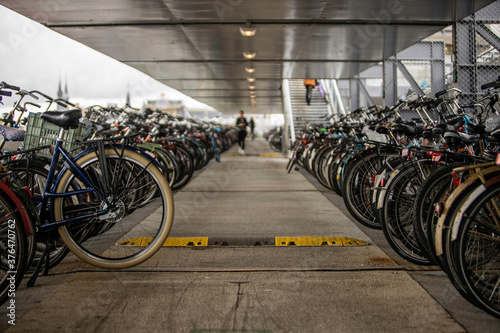 many bicycles stopped in amsterdam parking lot Wallpaper Mural