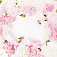 Romantic Frame, Delicate Pink ...
