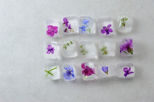 Flowers In The Ice Cubes On The Gray Background.
