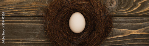 Fotografiet top view of fresh chicken egg in nest on wooden surface, panoramic shot