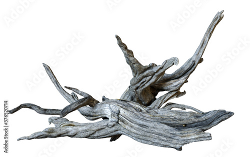 Photo driftwood isolated on white background, dry branches