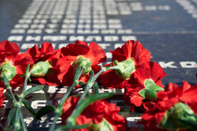 """Russian Language Phrase """"sergeant,major, Colonel,lieutenant, Ranker"""" - Army Ranks, Flowers On The Memorial To Fallen Soldiers, Red Carnations On Black Marble"""