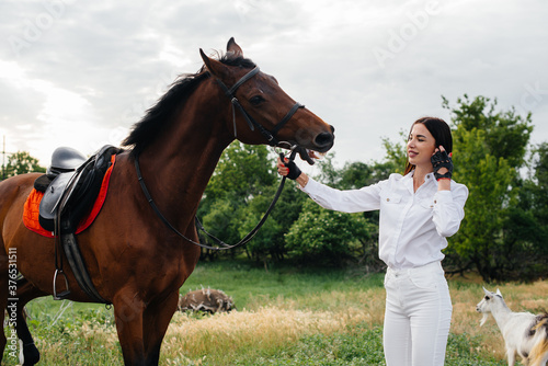 Fototapeta A young pretty girl rider poses near a thoroughbred stallion on a ranch