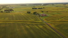 Aerial View Of American Midwestern Farm, Corn Field At Harvesting Season (September). Rural Landscape, Countriside, Early Sunny Morning