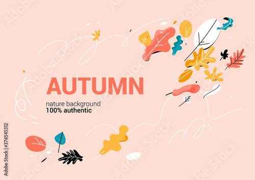 Fototapeta Trendy banner with color leaves obraz