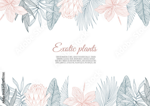 A border frame design decorated with floral tropical palm leaves and flowers