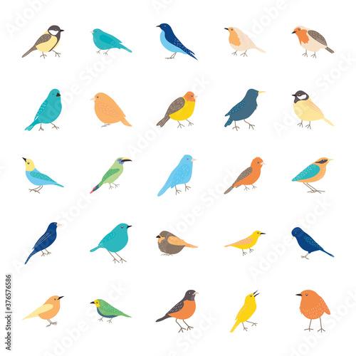 birds icon set, flat style Canvas Print