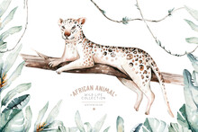 Watercolor Painting A Gepard . Wild Cat Isolated On White Background. Africa Safari Leopard Animal Illustration