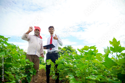 Fototapeta Indian farmer with agronomist at Cotton field , showing thumbs up obraz