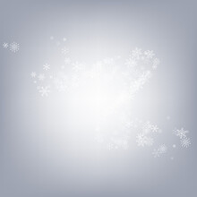 White Snowflake Vector Gray Ba...
