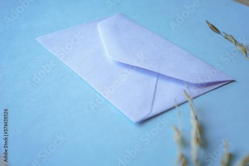Fototapeta white envelope with dried grass for greeting mockup seasonal concepts on blue background obraz na płótnie