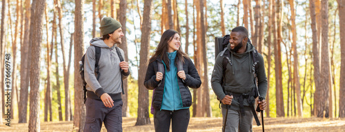 Cheery friends backpacking together by pine forest Wallpaper Mural