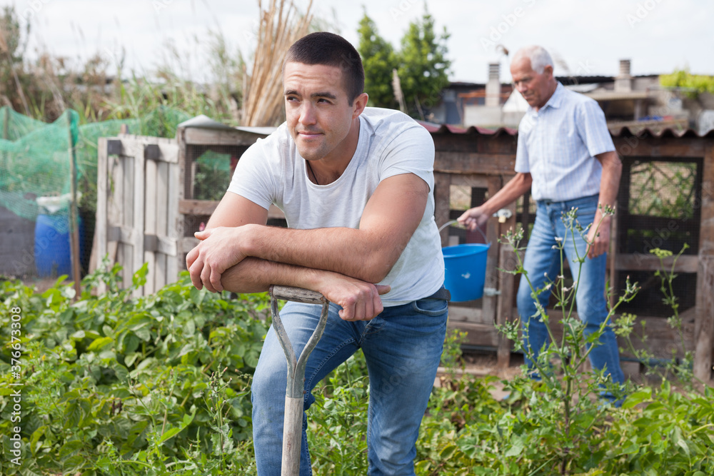 Fototapeta Positive man horticulturist with garden shovel at land in garden, during harvesting with family..