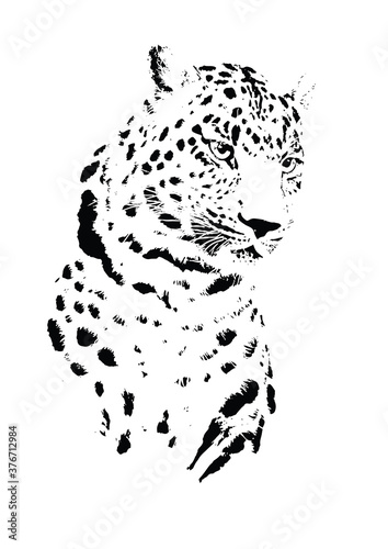 Tela simple leopard illustration