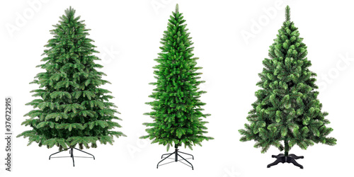Traditional christmas trees on stand without seasonal decoration isolated on whi Canvas Print