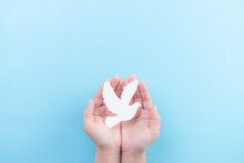 Hand Holding White Dove Bird On Blue Background, International Day Of Peace Or World Peace Day Concept, Animal Rights, Hope Concept.