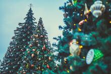 Christmas Tree On Evening Stre...